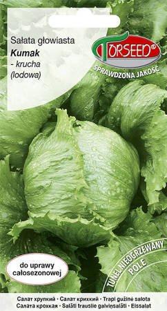 Sałata krucha (lodowa) Kumak 0,5 g