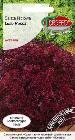 Sałata liściowa Lollo Rossa – czerwona 0,5 g