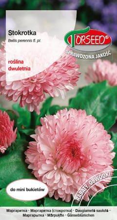 Stokrotka wielkokwiatowa - różowa 0,3 g
